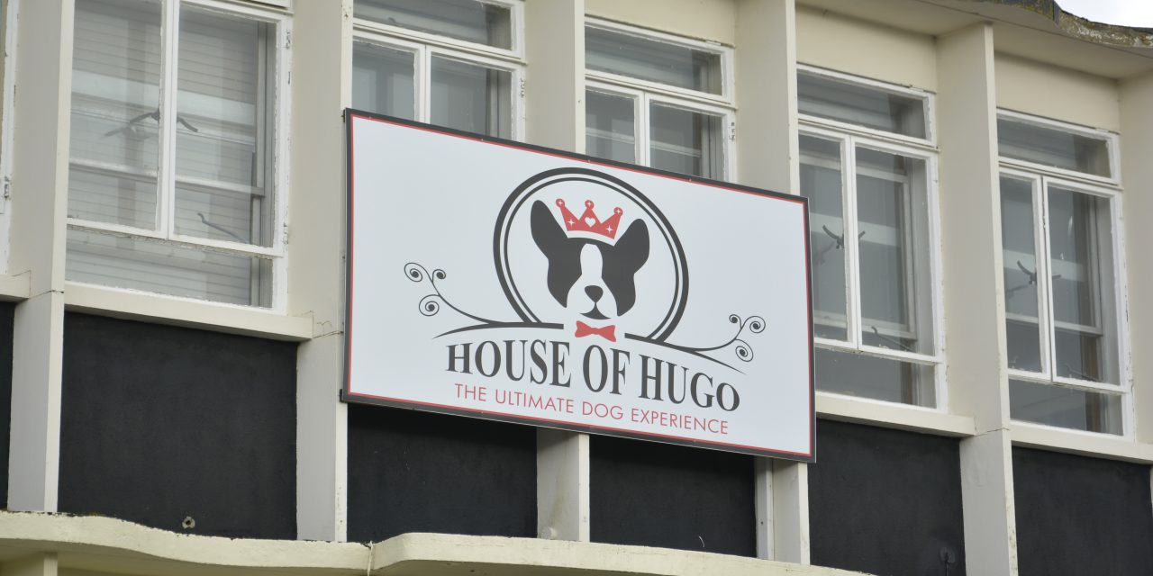 Backstage At The House Of Hugo – The Original Dog Hotel