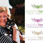 Review: Reiki Healing with Diana Street of Peaceful Harmony