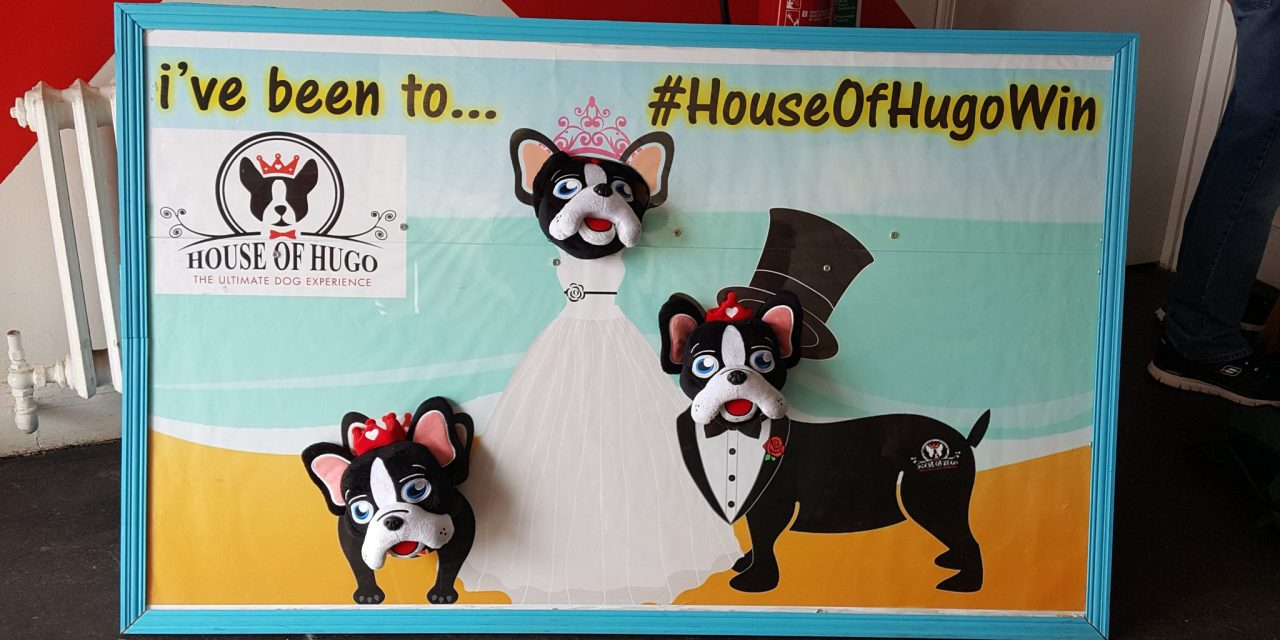 Happy 6th Anniversary to the House of Hugo – The Original Dog Hotel and Spa