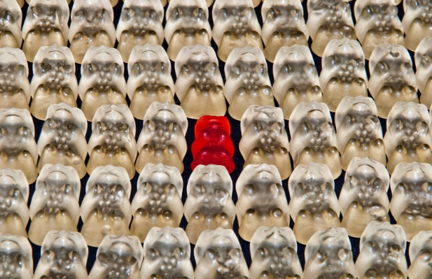 Helping Your Website to Stand Out From the Crowd